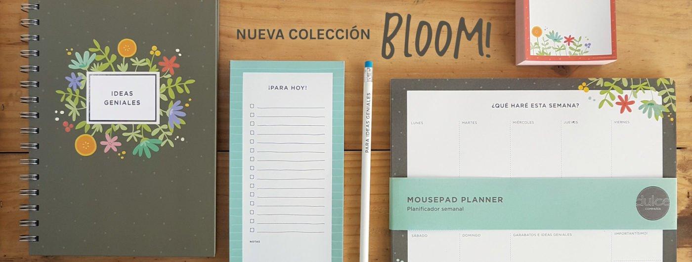 Banner nueva coleccion Bloom!